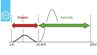 هیستوگرام گلبول های قرمز