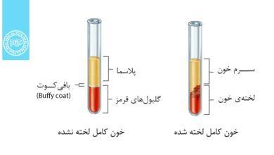 توضیح تفاوت سرم خون و پلاسمای خون