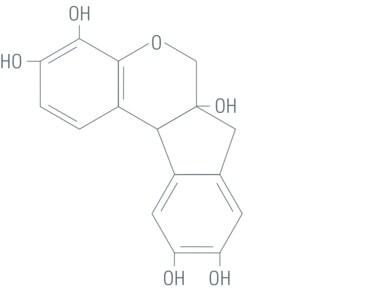 ساختار شیمیایی هماتوکسلین